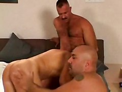 2 Daddy Bears Fuck Their Boy