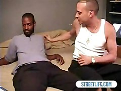 Interracial    Adam And Hustler
